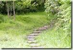 森の小道(レイキの道のたとえ)